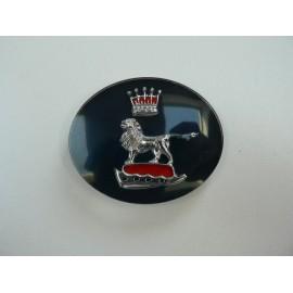 Grille centre badge