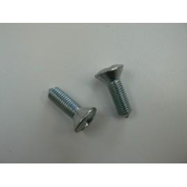 Door hinge screws