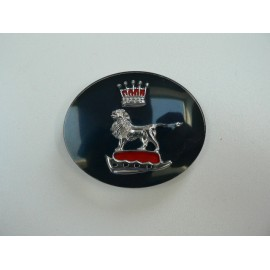 Grille centre badge